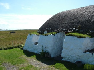 Traditional Thatch