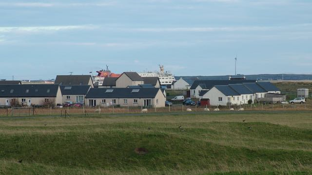photo of tiree