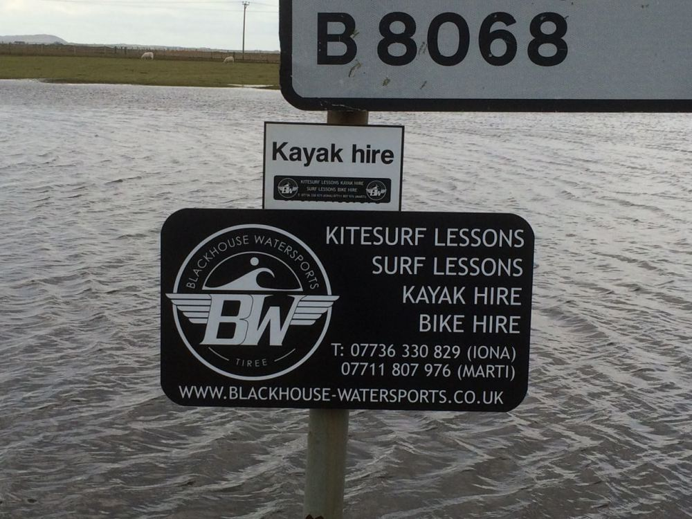 Yak Hire - And Surf Lessons!