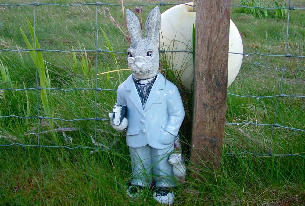 A Rabbit of the ministerial variety