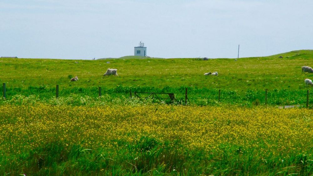 Looking across to the Lighthouse at Scarinish Old Harbour