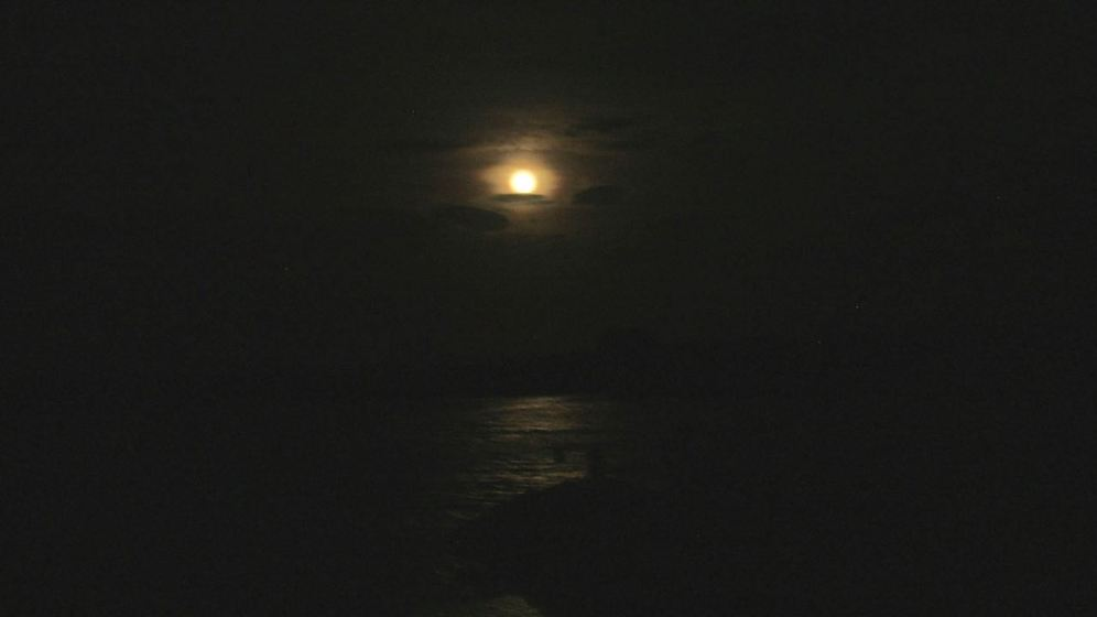 Moonshine at the Harbour