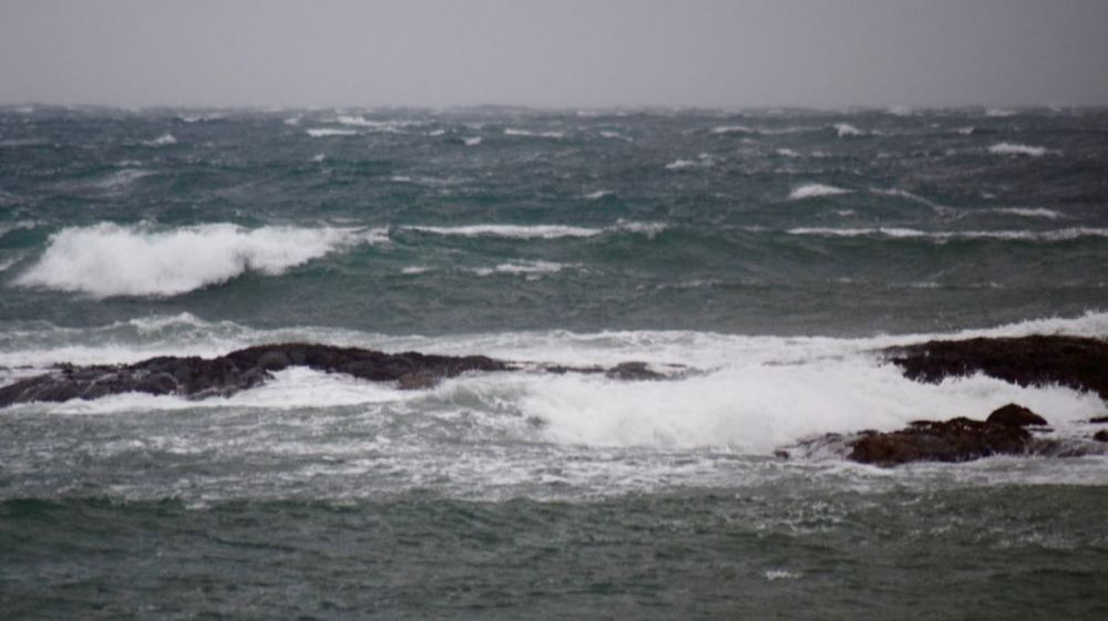 White horses in the Passage of Tiree