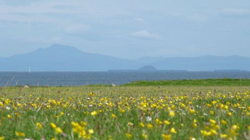 Machair Scarinish
