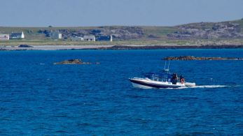 Rib enters Gott Bay