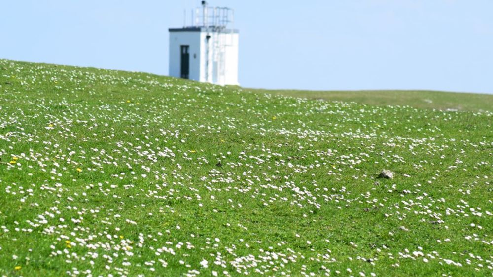 The Machair and Scarinish Lighthouse