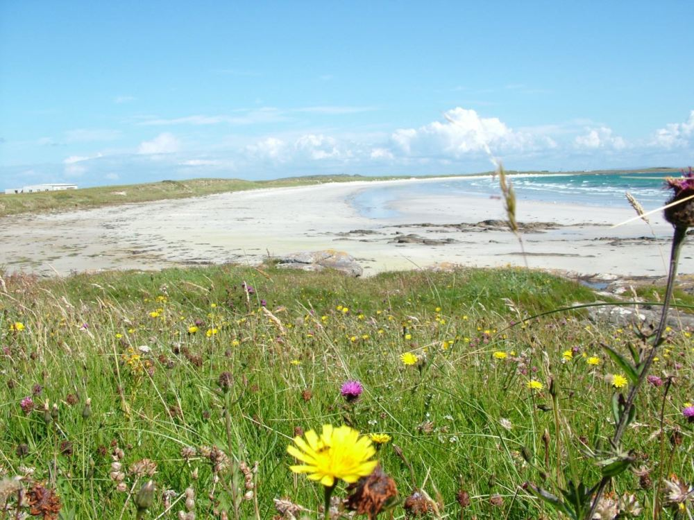 Crossapol Beach as viewed from the Experience Tiree Tour (2011)