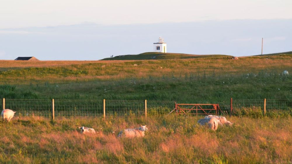 A golden glow over the Machair and Scarinish Lighthouse