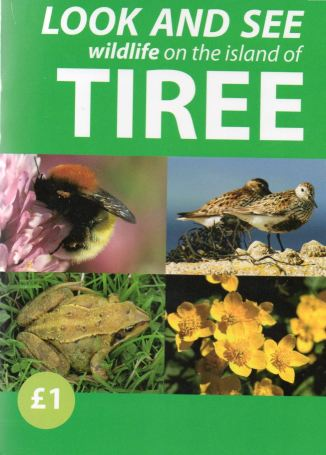 Look and See wildlife on the island of Tiree