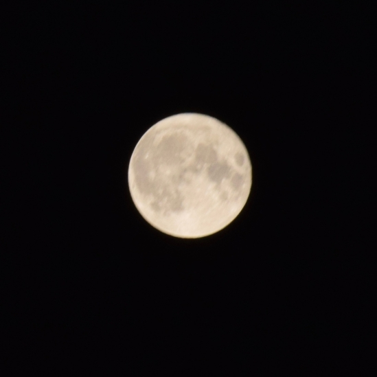 Supermoon - 1:00am over Tiree
