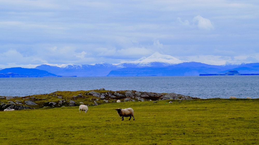 Ben More from Pier Road Scarinish