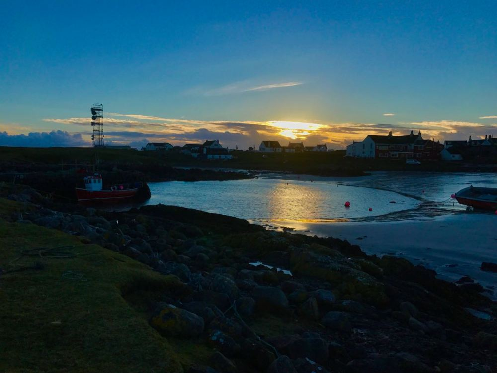 Scarinish Harbour at sunset