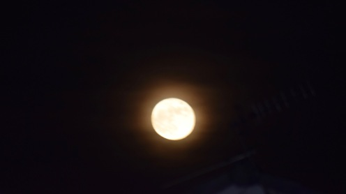 Wolf Moon from Dundee
